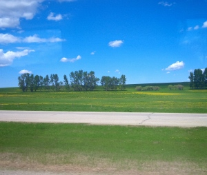 Have I mentioned how much I love driving in the Prairies?